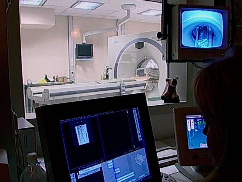 erste Bilder aus dem Magnet-ResonanzTomographen: eindeutig Knochen und Zähne