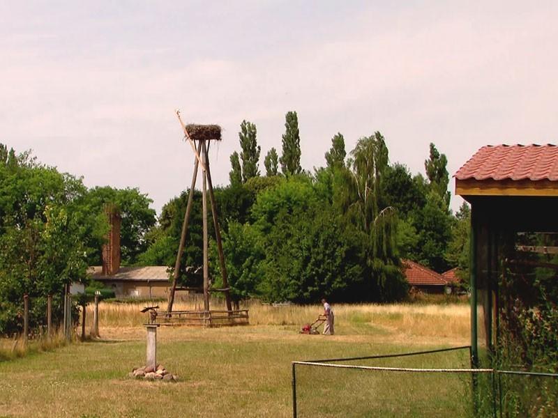 der Storchenhof Loburg – das Refugium der Familie Kaatz